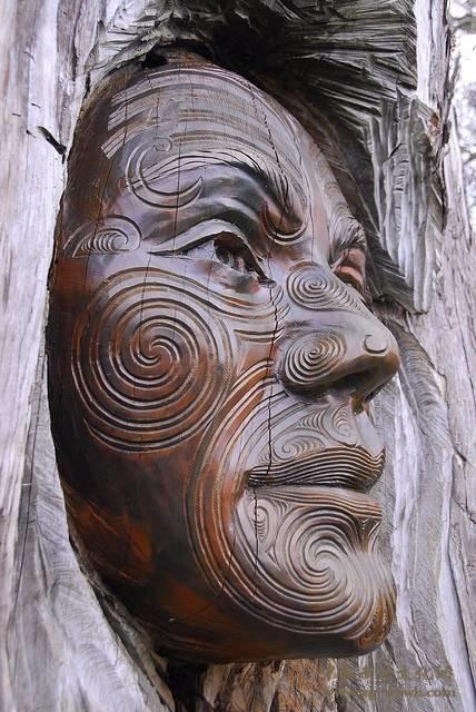 树木雕刻 (13)